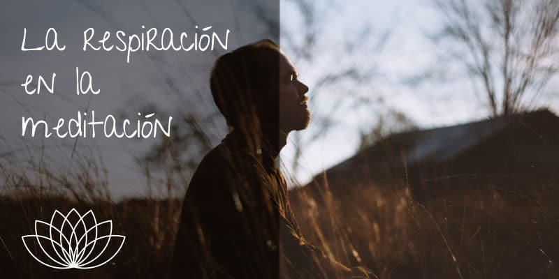 la-respiracion-en-la-meditacion
