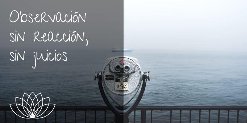 observacion-sin-reaccion-sin-juicios